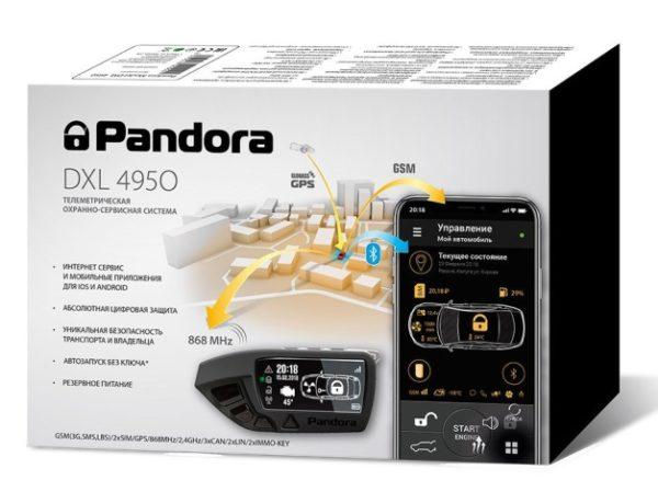 Упаковка Pandora DXL 4950