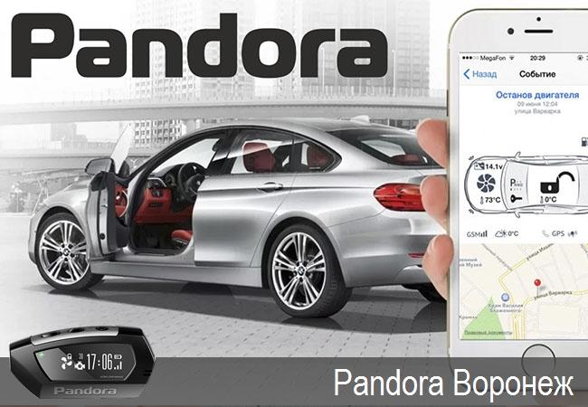 Pandora Воронеж,официальные представители